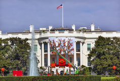 Halloween Fall Decorations White House Washington DC Royalty Free Stock Image
