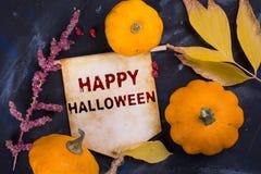 Halloween felice immagini stock