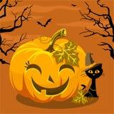 Halloween felice con la zucca ed il gatto Fotografie Stock