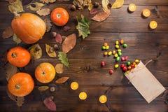 Halloween felice! Il concetto del festival di autunno fotografie stock