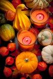 Halloween feliz Fotos de Stock