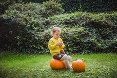 Halloween feliz A menina bonito está sentando-se em uma abóbora e está guardando-se uma maçã em sua mão fotos de stock royalty free