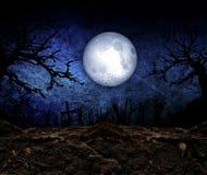 Halloween Festival Background Stock Image