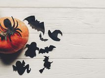 Halloween flat lay. happy halloween concept. pumpkin with witch. Ghost bats and spider black decorations on white wooden background top view with space for text Stock Image