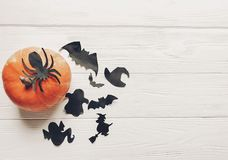 Halloween flat lay. happy halloween concept. pumpkin with witch. Ghost bats and spider black decorations on white wooden background top view with space for text Royalty Free Stock Photography