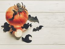 Halloween flat lay. happy halloween concept. pumpkin with witch Royalty Free Stock Photo