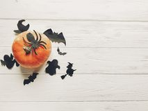 Halloween flat lay. happy halloween concept. pumpkin with witch. Ghost bats and spider black decorations on white wooden background top view with space for text Royalty Free Stock Photos