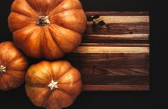 Halloween flat lay of pumpkins on wooden board royalty free stock photography