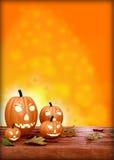 Halloween-Fliegerdesignschablone, mit Kürbis lizenzfreies stockfoto