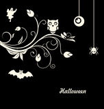 Halloween Flourish Dark Background Stock Photos