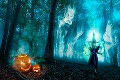 Halloween Forest Spirits And Witch Stock Foto