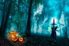 Halloween Forest Spirits And Witch Lizenzfreie Stockfotos