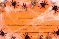 Halloween frame with skeletons and spider webs on orange wood Stock Photos