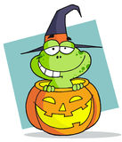 Halloween frog Stock Photos
