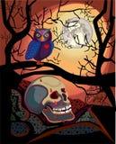 Halloween full moon night Stock Photos