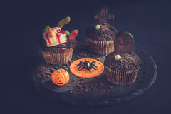 Halloween funny cup cakes. Funny chocolate cup cakes as Halloween decoration,selective focus Stock Photos