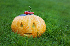 Halloween funny pumpkin with a smile in autumn green grass Royalty Free Stock Photography