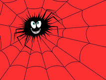 Halloween Funny spider on the red cobweb Stock Photos