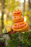 Halloween-furchtsamer Kürbis im Herbstwald Lizenzfreie Stockfotos