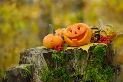 Halloween-furchtsamer Kürbis im Herbstwald Stockbild