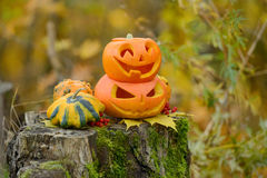 Halloween-furchtsamer Kürbis im Herbstwald Lizenzfreie Stockfotografie
