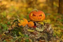 Halloween-furchtsamer Kürbis im Herbstwald Stockbilder