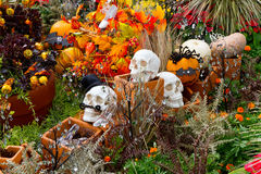 Halloween Garden Royalty Free Stock Images
