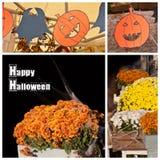 Halloween garden party Royalty Free Stock Photos
