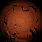 Halloween: gatto, pipistrelli, zucca - composizione decorativa Immagini Stock Libere da Diritti