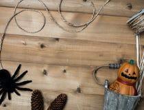 Halloween-Gegenstandkonzept mit hölzernem Hintergrund Stockfotografie
