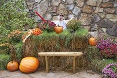 Halloween gekostumeerde vogelverschrikkers Royalty-vrije Stock Foto's