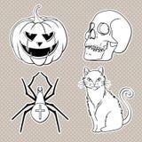 Halloween-geplaatste pictogrammen: pompoen, schedel, spin, kat Royalty-vrije Stock Afbeeldingen