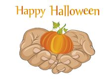 Halloween. The gesture of open palms. Folded hands stretch out   Royalty Free Stock Photos