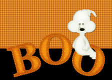 Free Halloween Ghost Boo Background Royalty Free Stock Image - 11129966