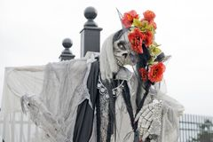 Halloween Ghoul. A white veiled skeleton with flowers in her hat for halloween Royalty Free Stock Image