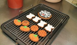 Halloween gingerbread biscuits. On the kitchen bench a baking tray on ginger halloween biscuits ready to eat Stock Image