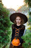Halloween. The girl represents the angry sorcerer. She is dressed in a dark dress and a hat and holds pumpkin lamp. On a girl's face a make-up for an evil look stock photography