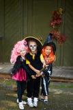 Halloween girls Royalty Free Stock Photo