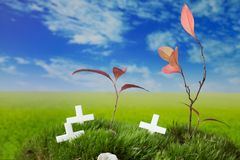 Graves and crosses on the meadow. Halloween graves on the fresh moss and grass Stock Images