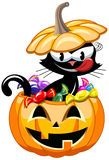 Halloween Greedy Cat Bucket Sweets Isolated Royalty Free Stock Images