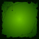 Halloween green background with spiders Stock Images