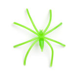 Halloween - Green Plastic Spider -  on White Background Royalty Free Stock Photo