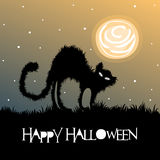 Halloween greeting with black cat and full moon Royalty Free Stock Photography