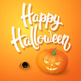 Halloween greeting card with pumpkin, angry spider and 3d brush lettering on orange background. Decoration for poster. Banner, flyer design. Vector Royalty Free Stock Photo