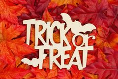 Halloween greeting Trick or Treat with fall leaves stock photography