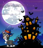 Halloween grey kitten wearing witches hat with scary castle in front of full moon Royalty Free Stock Photo