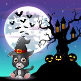 Halloween grey kitten wearing witches hat with tree house in front of full moon Stock Photo