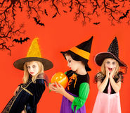 Halloween group of children girls costumes Stock Images