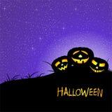Halloween-Gruß mit zwei aufschlussreichen Kürbisen auf Wiese mit Gras mit glänzendem dunklem nächtlichem Himmel mit Sternen und g stock abbildung