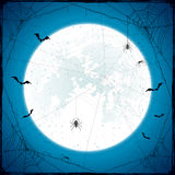 Halloween grunge background with Moon and spiders Stock Images